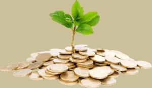 Mikrokredit - Wachstum durch Erfolg